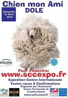 Chien mon ami - Exposition Canine Internationale
